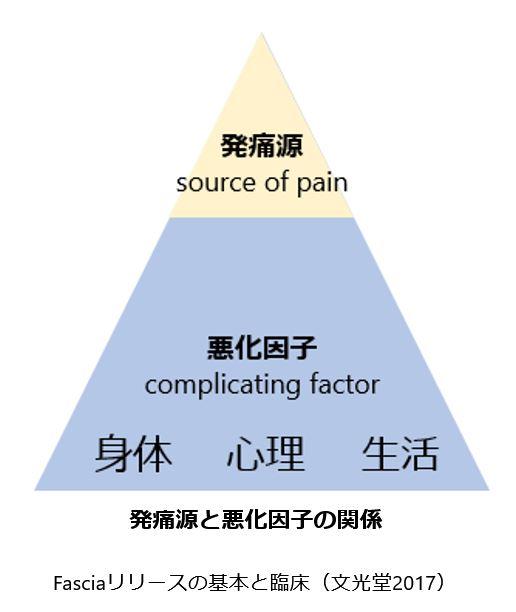 発痛源と悪化因子の関係